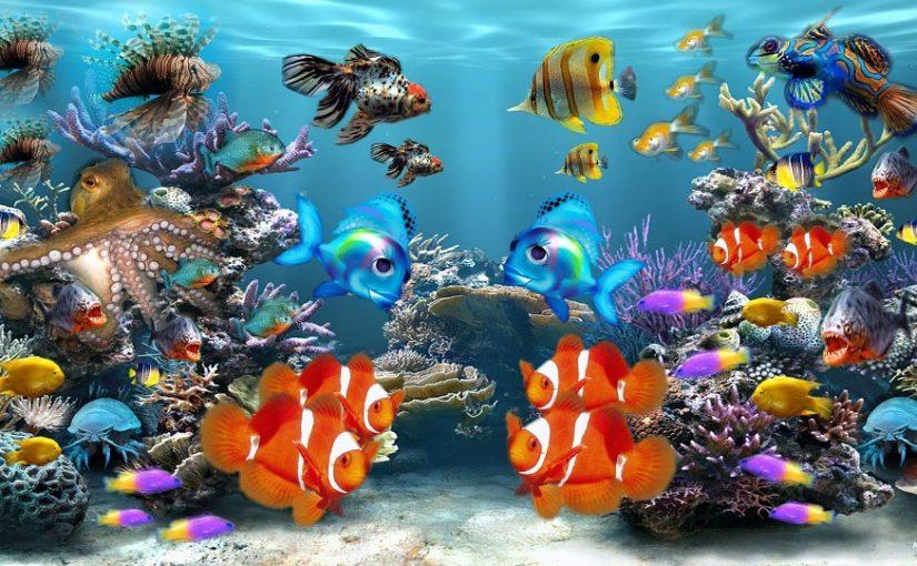 Lag en pappeske om til et akvarium